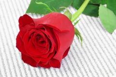 Rosa y libro del rojo, para el santo Georges Day en Cataluña, España Fotografía de archivo