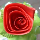Rosa y pétalo del rojo Imagen de archivo libre de regalías