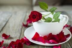 Rosa y pétalo del rojo en el cuenco blanco imágenes de archivo libres de regalías