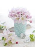 Rosafarbene Apfelblüte Lizenzfreie Stockbilder