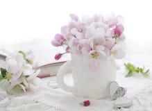 Rosafarbene Apfelblüte Stockfoto