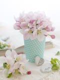 Rosafarbene Apfelblüte Lizenzfreies Stockbild