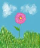 Rosafarbene Blume im Gras Stockfotografie