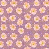 Rosafarbene Blumen. Stockbilder