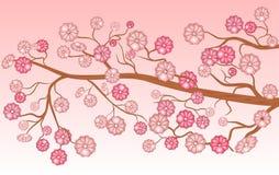 Rosafarbene Blumen