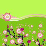 Rosafarbene Blumen auf einem grünen Hintergrund Stockbild
