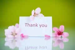 Rosafarbene Blumen des Pfirsiches Lizenzfreie Stockfotografie