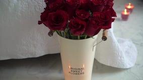 Rosafarbene Blumen des Rotes stock video footage
