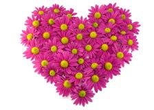 Rosafarbene Blumen in einer Form eines Inneren Lizenzfreies Stockfoto