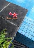 Rosafarbene Blumen, Gläser, Pool Stockfotos