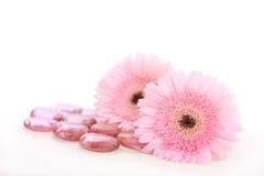 Rosafarbene Blumen und Badekurortsteine Lizenzfreie Stockfotos