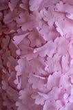 Rosafarbene Blumenbeschaffenheit Lizenzfreies Stockfoto