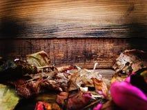 rosafarbene Blumenblätter Autumn Leaves Vase mit trockenen Blättern, Apfel und Kerzen auf dem Rausschmiß lizenzfreies stockfoto