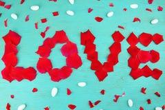 Rosafarbene Blumenblätter der Wortliebe Stockfoto