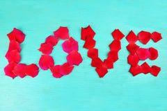 Rosafarbene Blumenblätter der Wortliebe Lizenzfreie Stockbilder