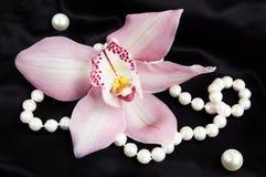Rosafarbene Cymbidium-Orchidee mit Perlen auf einer schwarzen Seide Lizenzfreie Stockfotos