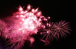 Rosafarbene Feuerwerke Stockbild
