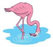 Rosafarbene Flamingokarikaturabbildung Lizenzfreie Stockbilder