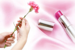 Rosafarbene Gartennelke mit Kosmetik Stockfotografie
