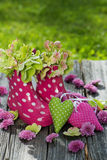 Rosafarbene Gummimatten Stockbild