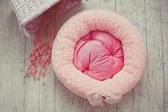 Rosafarbene Haustiermatratze im Raum Lizenzfreies Stockbild