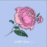 Rosafarbene Illustration der Weinlese Stockbilder