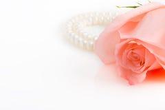 Rosafarbene Knospe des Rosas mit Perlenhalskette Stockbilder