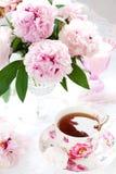 Rosafarbene Pfingstrosen und Tasse Tee Lizenzfreies Stockbild