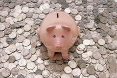 Rosafarbene Piggy Querneigung mit Münzen Stockbild
