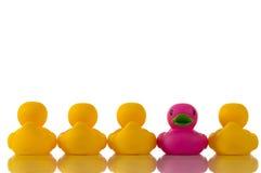 Rosafarbene, purpurrote Gummiente mit gelben Enten Lizenzfreie Stockfotos