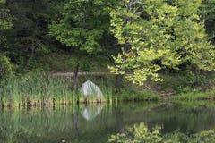 Rosafarbene Reflexionen des Sees lizenzfreies stockfoto