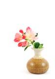 Rosafarbene Rhododendren in einem Vase Stockfotografie