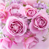 Rosafarbene Roseblumen Lizenzfreie Stockfotografie