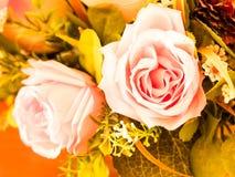 Rosafarbene Roseblumen Abbildung der roten Lilie Stockfotos