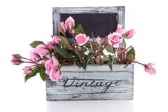 Rosafarbene Rosen in einem hölzernen Pflanzer lizenzfreie stockbilder