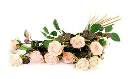 Rosafarbene Rosen getrennt Stockbild