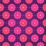 Rosafarbene runde Blume auf dunklem violettem nahtlosem Muster Stockbild