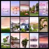Rosafarbene Sonnenuntergang-Ansammlung stockfoto