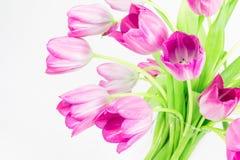 Rosafarbene Tulpen im Glasvase Lizenzfreie Stockfotos