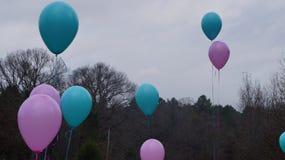 Rosafarbene und blaue Ballone Lizenzfreie Stockfotografie