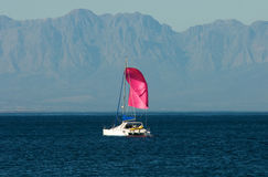 Rosafarbene Yacht stockbilder