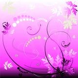 Rosafarbener Blumenhintergrund Stockfotos