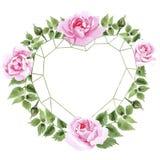 Rosafarbener Blumenkranz des Wildflowertees in einer Aquarellart Stockbilder