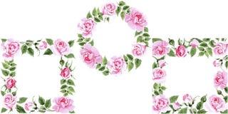 Rosafarbener Blumenrahmen des Wildflowertees in einer Aquarellart Stockfotos