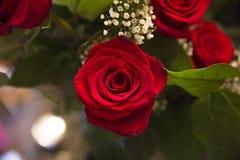 rosafarbener Blumenstrauß Stockfotografie