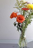 Rosafarbener Blumenstrauß der Urneblume Lizenzfreies Stockbild