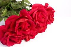 Rosafarbener Blumenstrauß des Gewebes Stockbild