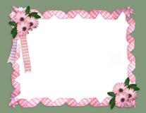 Rosafarbener Farbbandgänseblümchenrand Stockbilder