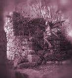 Rosafarbener feenhafter Hintergrund Stockfotografie