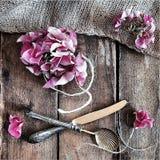 Rosafarbener Garten Lizenzfreie Stockfotografie